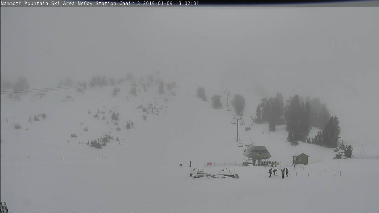 Mammoth Mountain Web Cam | MC Coy Station Live Cam